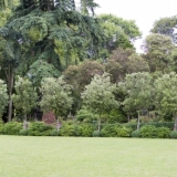 Garden Design, Surrey, Hampshire