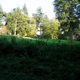 Garden Design, Surrey, Hampshire, Liphook